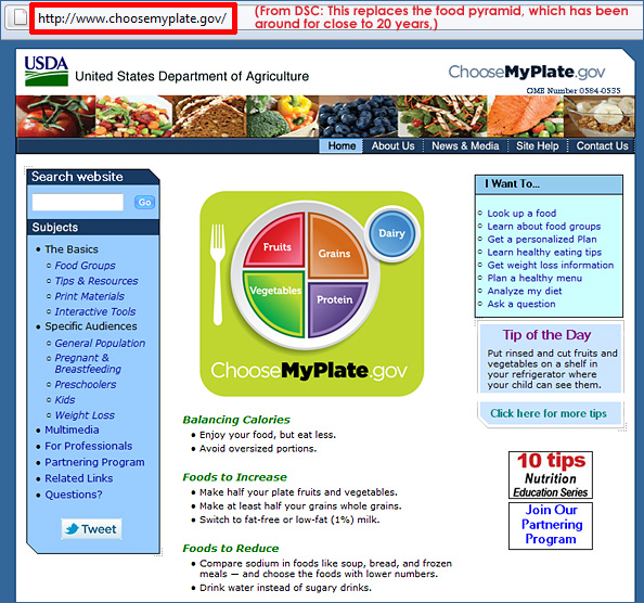Choose My Plate dot gov replaces the food pyramid