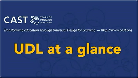 Universal Design for Learning (UDL) at a glance -- video
