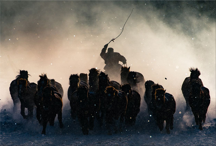 Horseman-NationalGeographic2016Winner