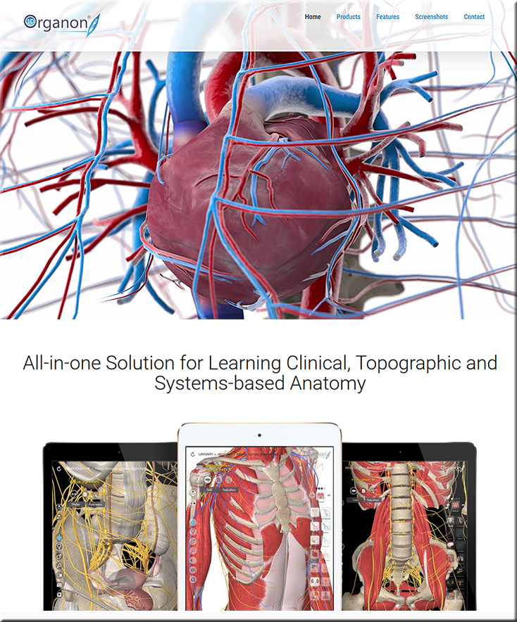Some sharp possibilities for learning about human anatomy