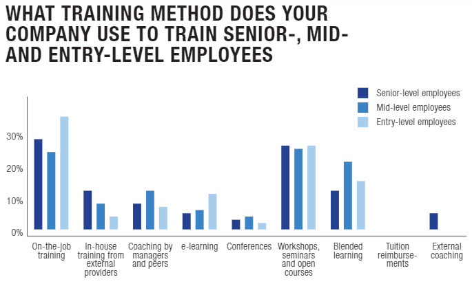 types of training offered to entry level, mid- and senior- level employees